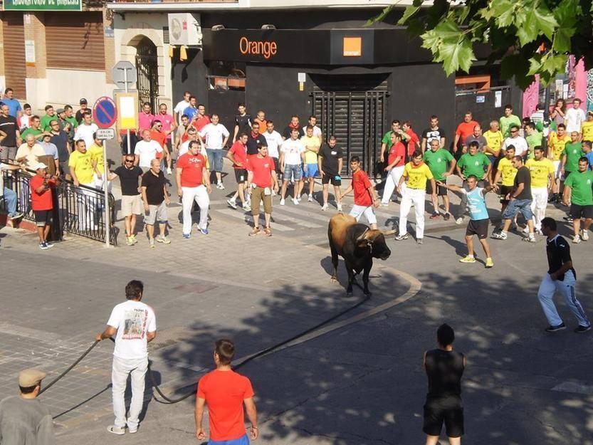 Toro de Cuerda de Grazalema en Chiva