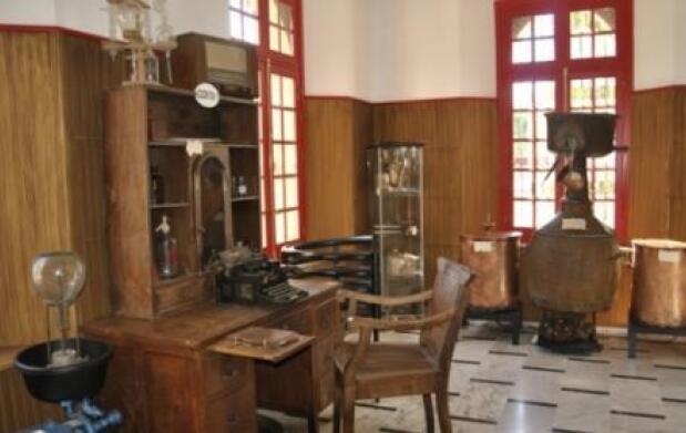 Gin Excellent 100% Ecológica + Visita museo destilería