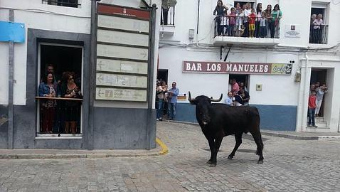 Alcalá celebra un año más el día de su patrón, San Jorge