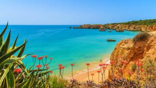 Verano todo incluido 4* en el Algarve