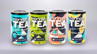 Pack Moringa Tea pirámide